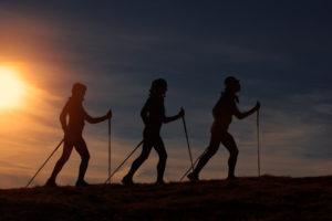 des marcheurs nordique sont en train de s'entrainer dans la montagne